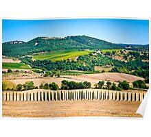 Tuscany landscape 1. Poster