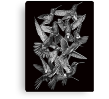 Hummingbird Dance in Sharpie (Grayscale Edition) Canvas Print