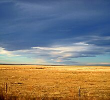 Storm over the Pawnee National Grassland, Colorado, USA by Margaret  Hyde