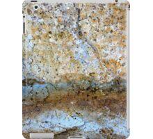 Desert Twilight iPad Case/Skin
