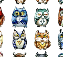 19 Owls and 1 Cat Sticker