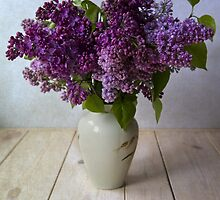 Lilacs by JBlaminsky