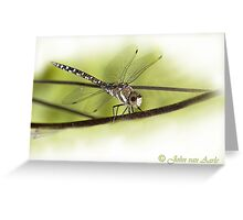 ...its a small World ..the 'libella /dragonfly'  Greeting Card