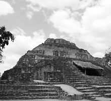 Mayan Ruins by Jackie Bell