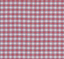 Red White and Blue Plaid Fabric Design by KWJphotoart