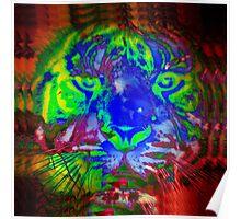 Tiger_8518 Poster