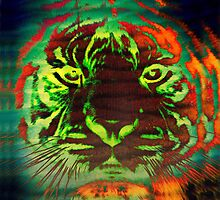 Tiger_8531 by AnkhaDesh