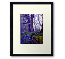 Bluebells in the Forest Rain Framed Print
