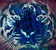 Tiger_8538 by AnkhaDesh