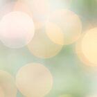 Spring Light Bokeh by mallorybottesch