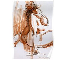 Voluptuous Figure Poster