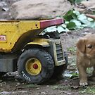 Remi Tonka Truck by goldnzrule