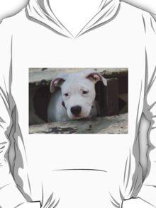 Stroker  T-Shirt