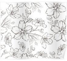 Cherry blossom seamless pattern. Poster