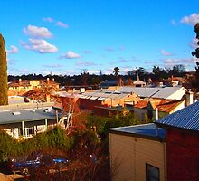 Castlemaine, from the roof of The Heron Gallery by Margaret Morgan (Watkins)