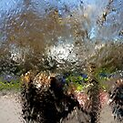 Monet Window (1) by clickedbynic