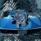 ILV2EAT-TIGER - CAR - PICTURE/CARD CREATIONS BY RAPTURE777 by ✿✿ Bonita ✿✿ ђєℓℓσ