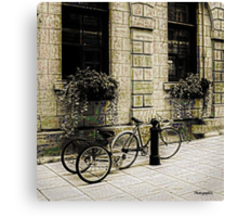 Tandem Bicycle and Flowers Canvas Print