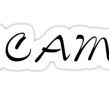 big business Scam artist Sticker