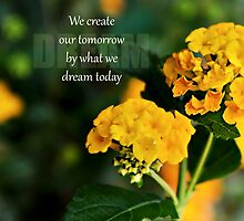 Create a dream by Scott Mitchell