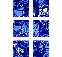Fragmented Monarchy in Sharpie (Ice Ice Baby Edition) Photographic Print