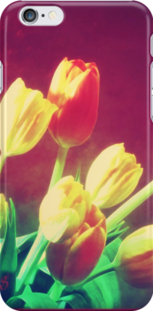 Tulips by subhraj1t