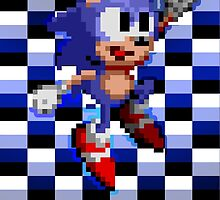 Sonic Est. 1991 by insomniosis