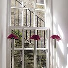 Romantic Window by Marylou Badeaux