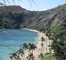 Hanauma Bay, Hawaii by LexiBryant
