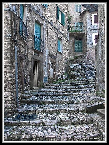 Artena Steps & Walkways Italy by Warren. A. Williams