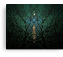 Embrace The Night Canvas Print