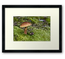 A Tip O the Cap Framed Print