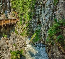 Gorner Gorge by Adam Northam