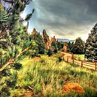 Garden of the Gods by Noble Upchurch