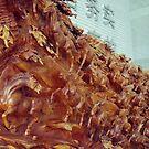 Wooden Horses by Stephan Parylak