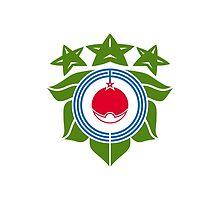 Flag of Biratori, Hokkaido, Japan by abbeyz71