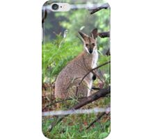 The Other Side Of The Fence iPhone Case/Skin