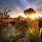 Outback Sunset by Craig Hender