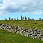 The Callanish Stones, Outer Hebrides, Scotland by MidnightMelody