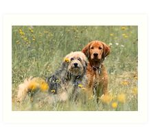 Kate and Sam - In the Meadow Art Print