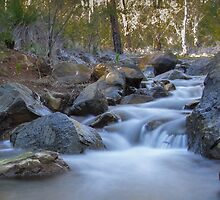 Lesmurdie Creek by Neil Bushby