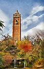 Cabot tower and Peace Park, Bristol, UK by buttonpresser