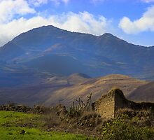 Old Andes Homestead by Al Bourassa