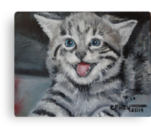 Marilyn the Cat Canvas Print