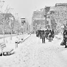 Let it Snow by Michael Vesia