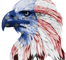 American Eagle by taliaspencer