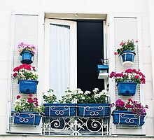 Window Dressing by pamelaburns