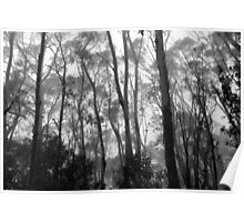 Listen To The Trees Poster