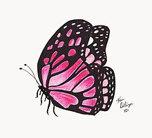 Pink Butterfly by Kevin Dellinger