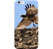 Red Tail Hawk Glides Hillside iPhone Case/Skin